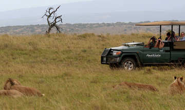 Day Safaris At Hlosi Game Lodge  (1)