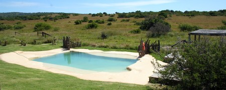 Hlosi Game Lodge Swimming Pool