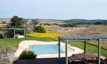 Hlosi Game Lodge Amakhala Game Reserve Pool