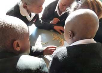 Conservation Levy Amakhala Game Reserve Education