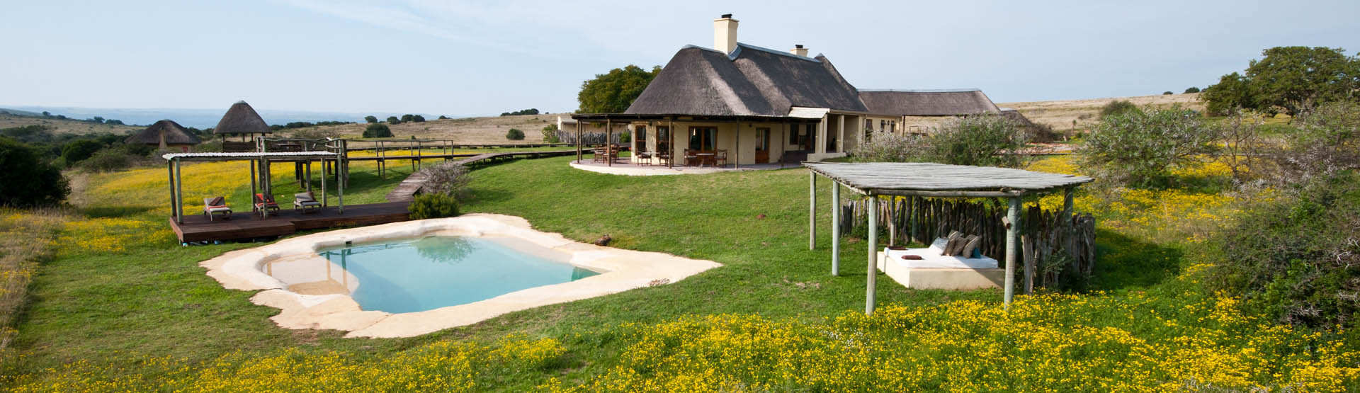 Hlosi Game Lodge Amakhala Game Reserve Eastern Cape Pool Area